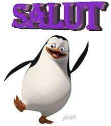 pingouin-salut
