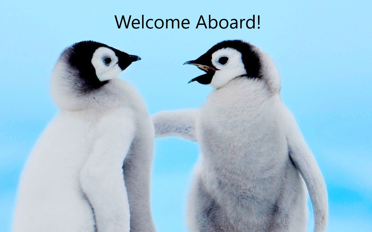 Welcome guin